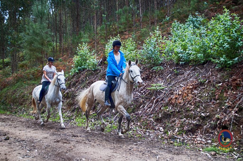 Os Parrulos_rutas a caballo_clases de equitación_hipica La Coruña_T6