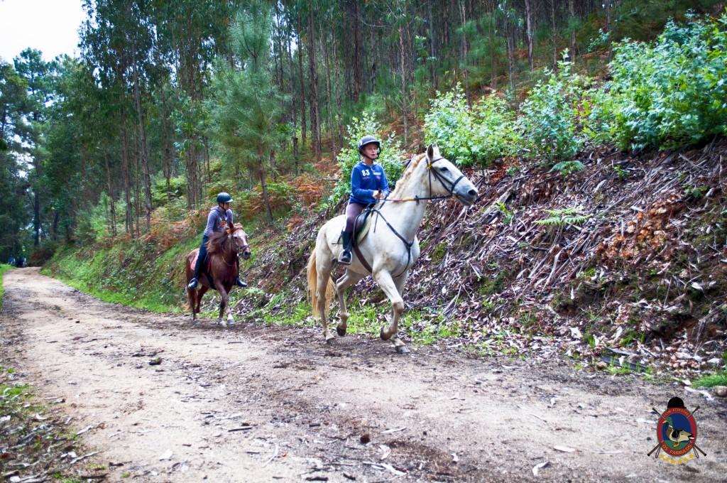 Os Parrulos_rutas a caballo_clases de equitación_hipica La Coruña_T7