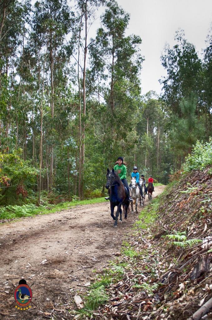 Os Parrulos_rutas a caballo_clases de equitación_hipica La Coruña_T8