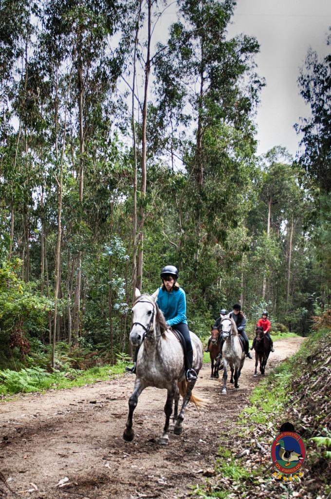 Os Parrulos_rutas a caballo_clases de equitación_hipica La Coruña_T9