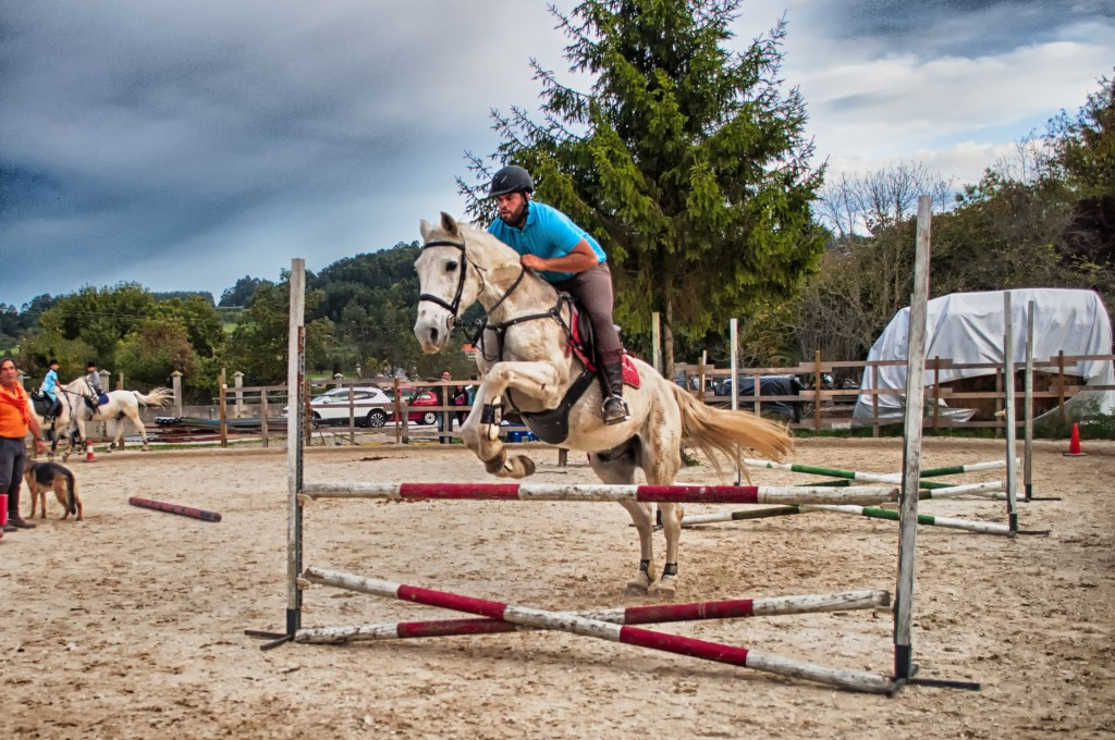 clases de salto_hipica la coruña_Os parrulos_equitación_s1