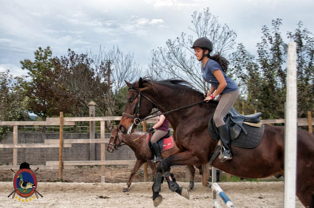 clases de salto_hipica la coruña_Os parrulos_equitación_s11