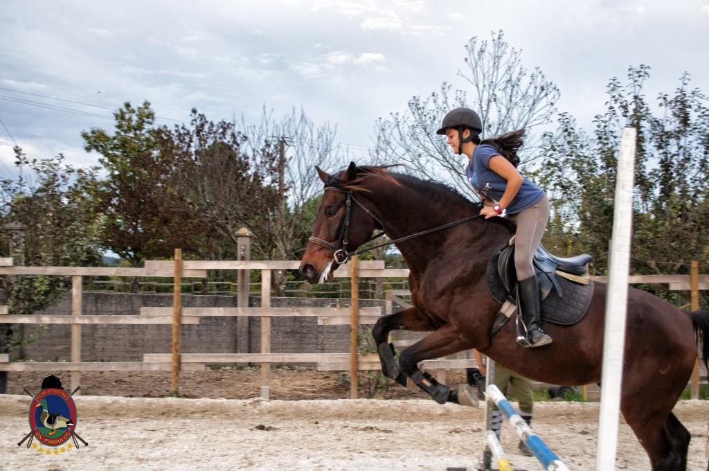 clases de salto_hipica la coruña_Os parrulos_equitación_s13