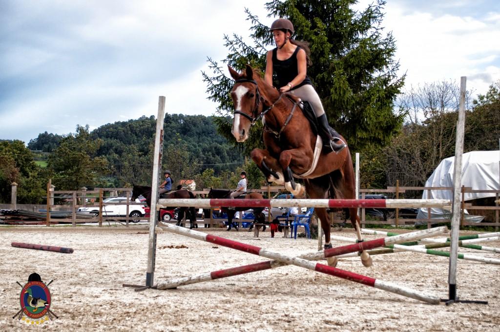 clases de salto_hipica la coruña_Os parrulos_equitación_s5