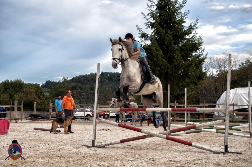 clases de salto_hipica la coruña_Os parrulos_equitación_s7