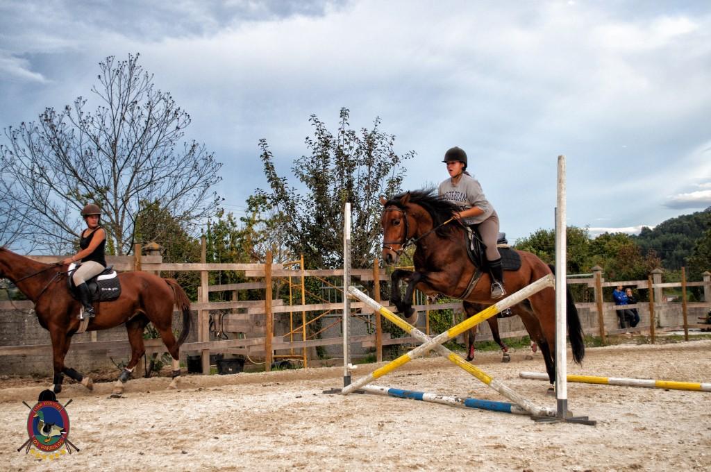 clases de salto_hipica la coruña_Os parrulos_equitación_s8