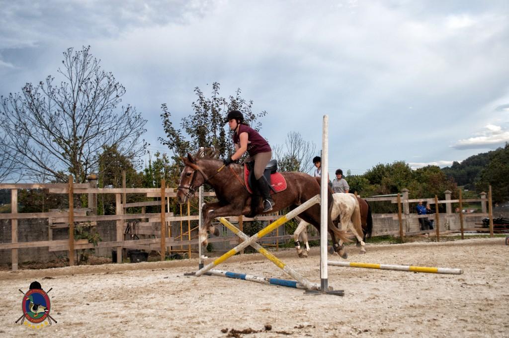clases de salto_hipica la coruña_Os parrulos_equitación_s9