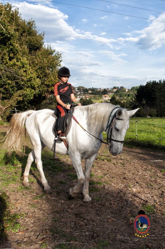 cumpleaños con caballos_Os Parrulos_hípica La Coruña_C14