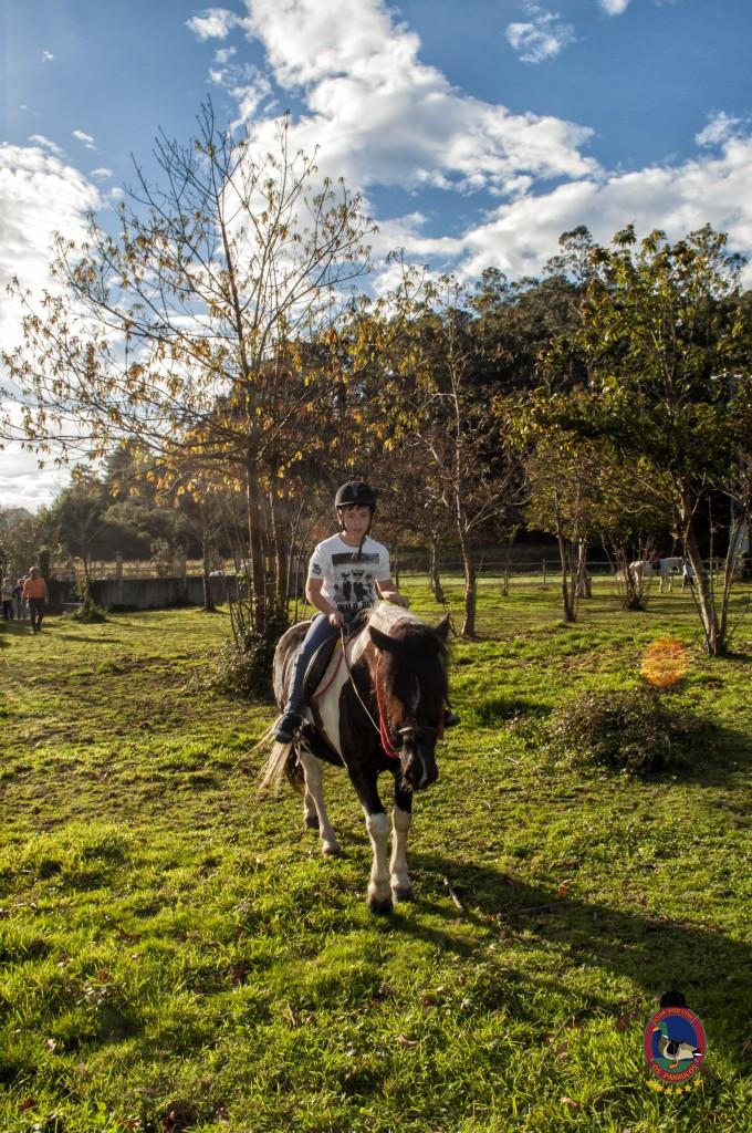 cumpleaños con caballos_Os Parrulos_hípica La Coruña_C19