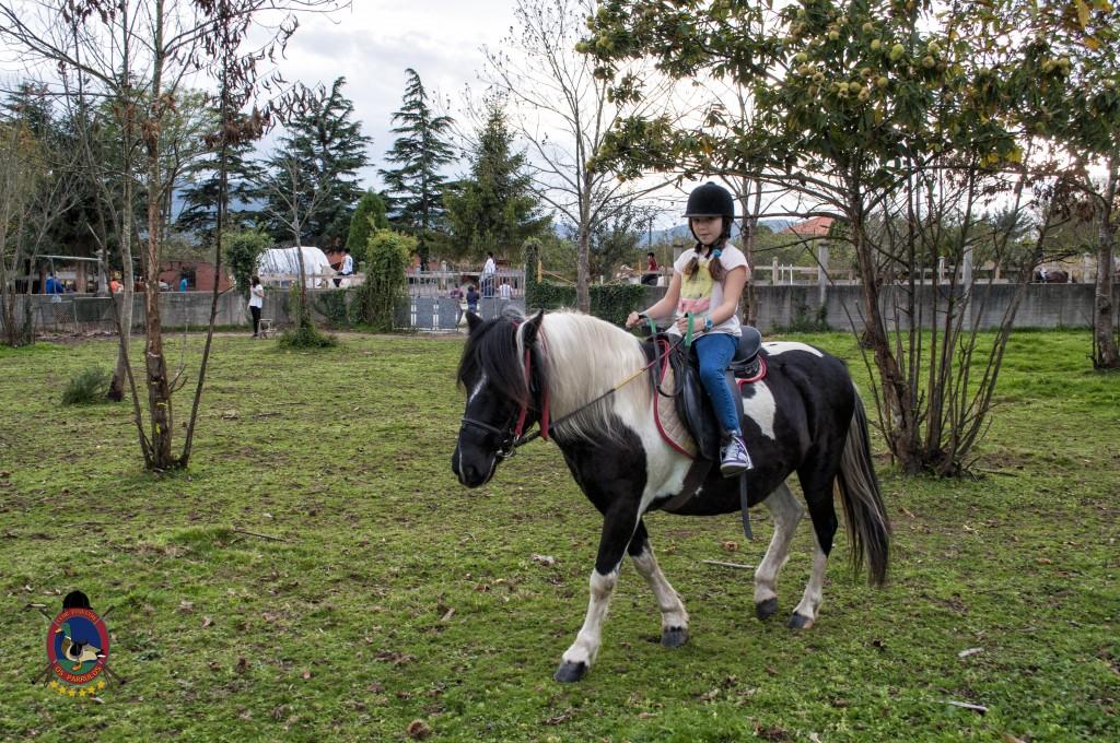 cumpleaños con caballos_Os Parrulos_hípica La Coruña_C34