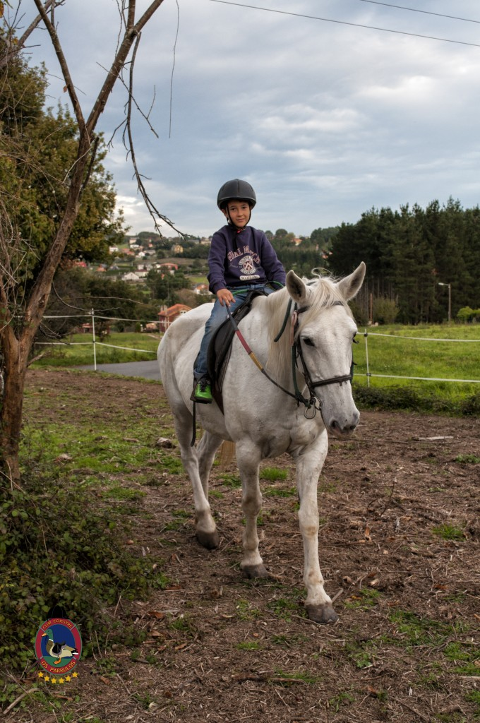 cumpleaños con caballos_Os Parrulos_hípica La Coruña_C36