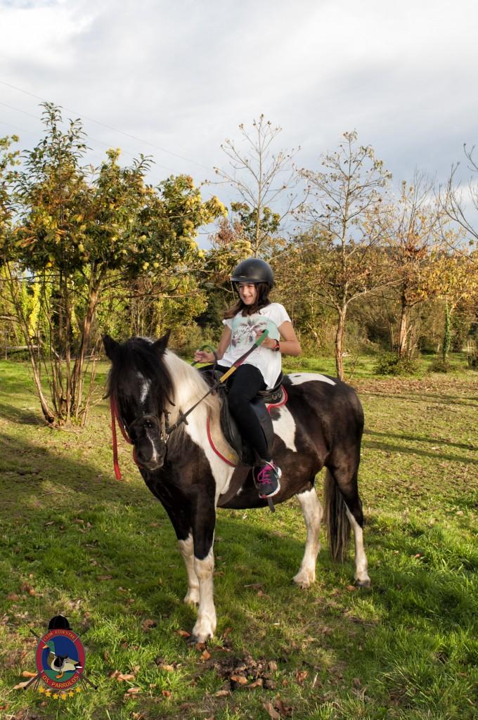 cumpleaños con caballos_Os Parrulos_hípica La Coruña_C39
