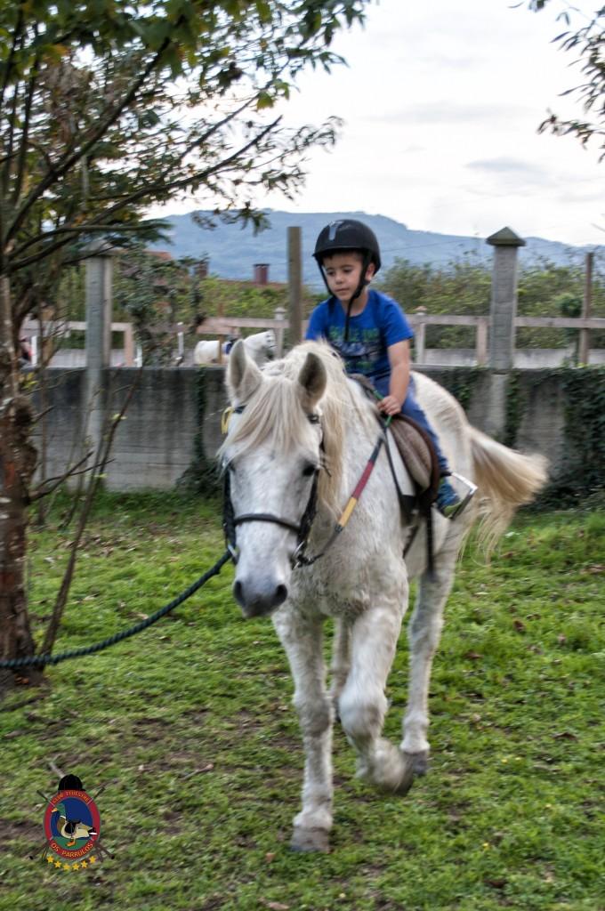 cumpleaños con caballos_Os Parrulos_hípica La Coruña_C50