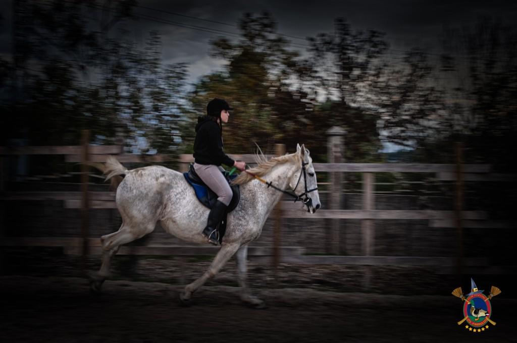 Halloween_Os Parrulos_caballos_hípica La Coruña_W41