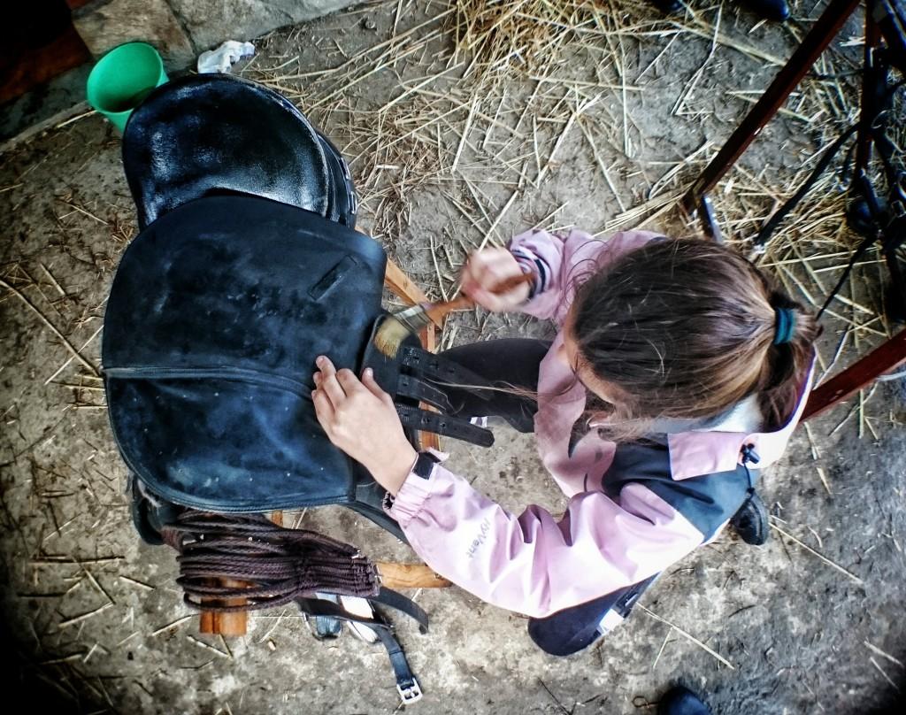 Os Parrulos_clases de equitación_hípica La Coruña_L1
