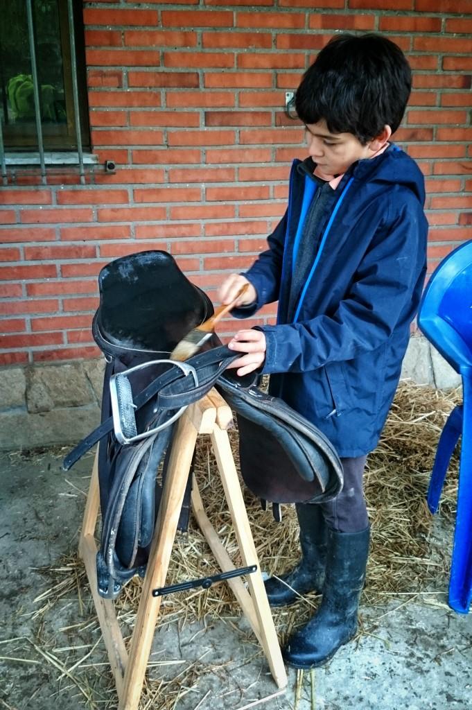 Os Parrulos_clases de equitación_hípica La Coruña_L5