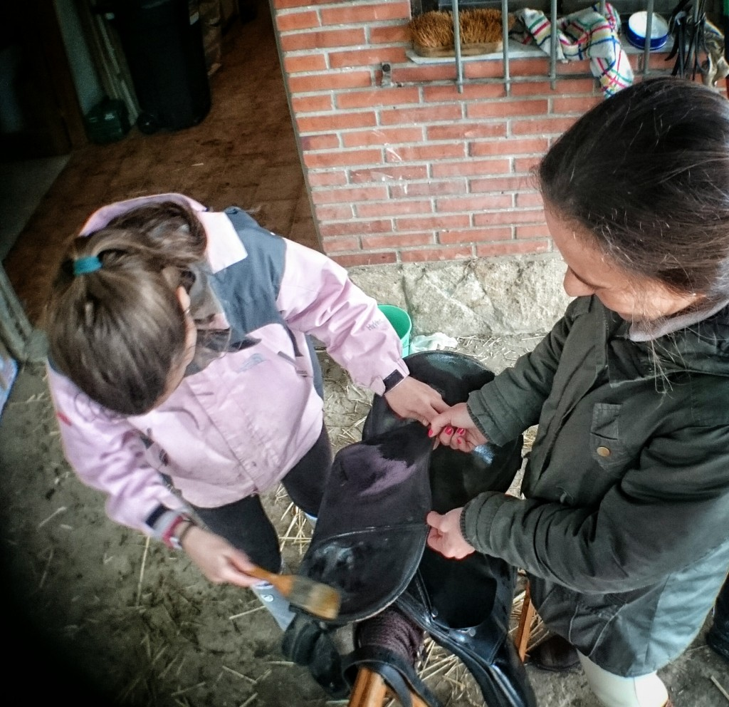 Os Parrulos_clases de equitación_hípica La Coruña_L7
