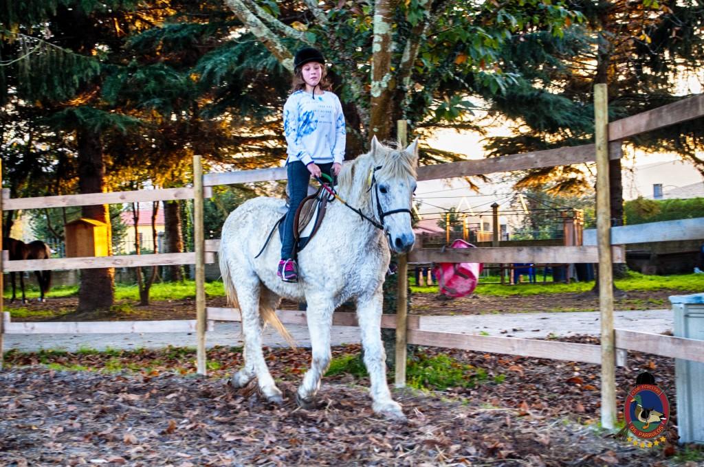 Os Parrulos_clases de equitación_hipica La Coruña_iniciación_I3