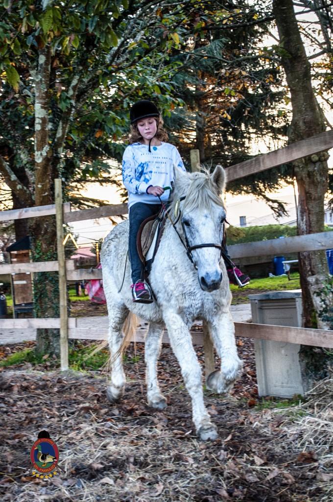 Os Parrulos_clases de equitación_hipica La Coruña_iniciación_I4
