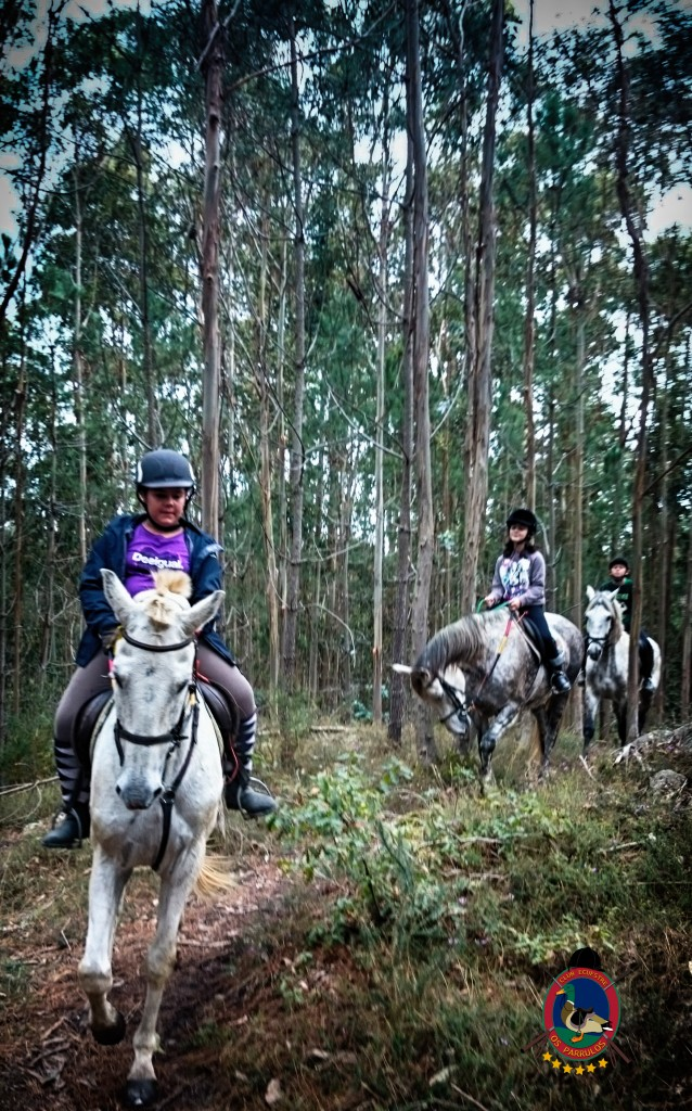 Os Parrulos_rutas a caballo _clases de equitación_hípica la coruña_R3