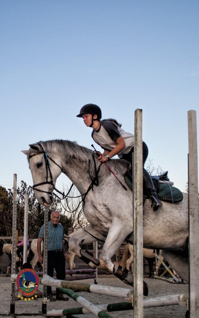 clases de equitación_hipica La Coruña_Os Parrulos_C10