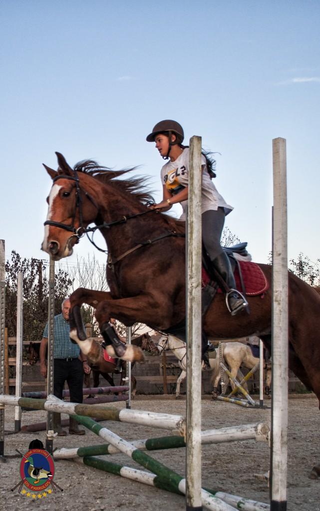 clases de equitación_hipica La Coruña_Os Parrulos_C11