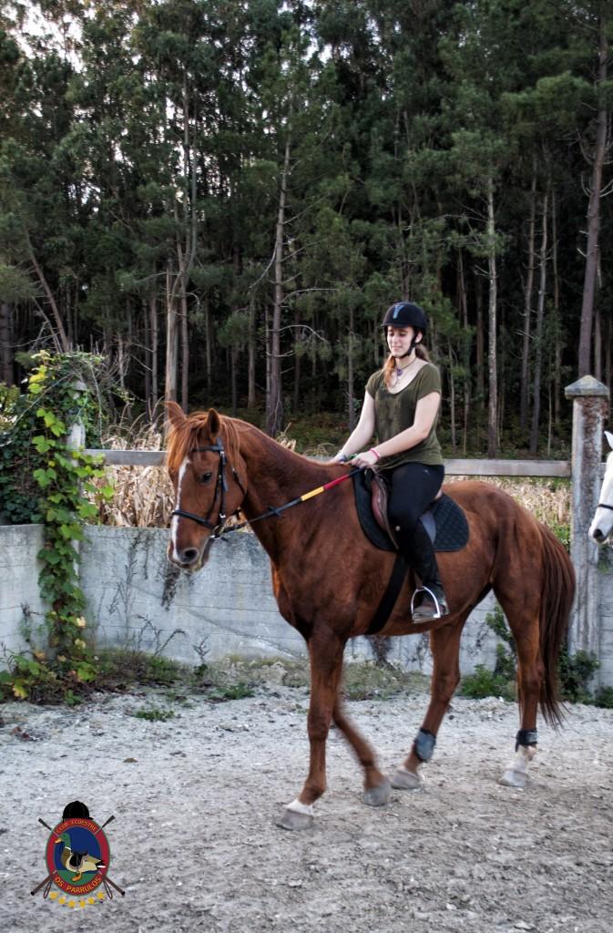 clases de equitación_hipica La Coruña_Os Parrulos_C14
