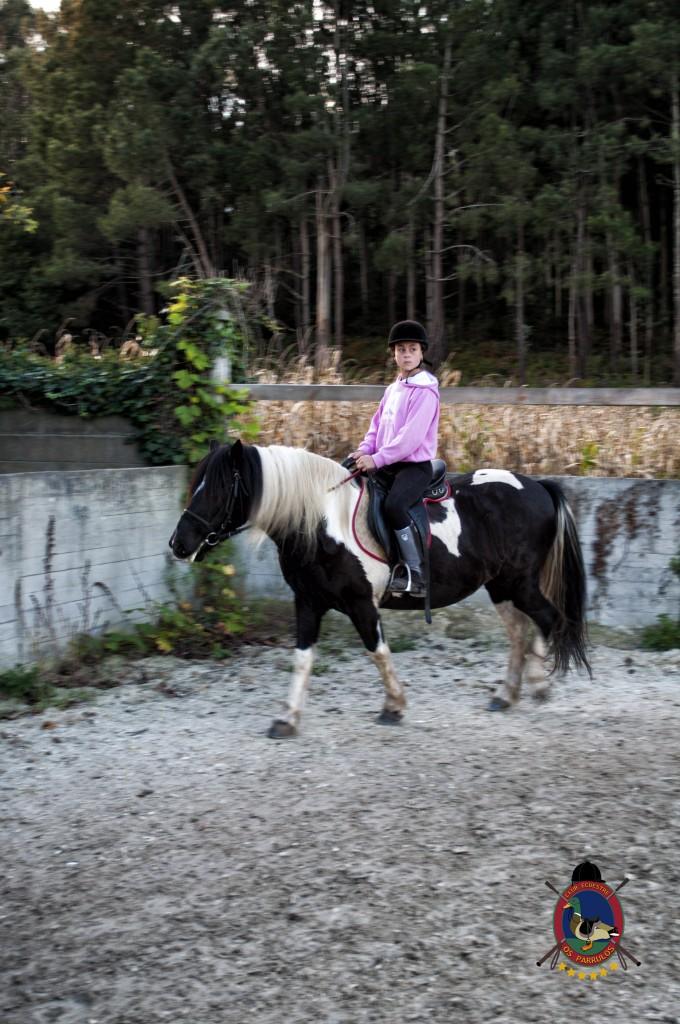 clases de equitación_hipica La Coruña_Os Parrulos_C16