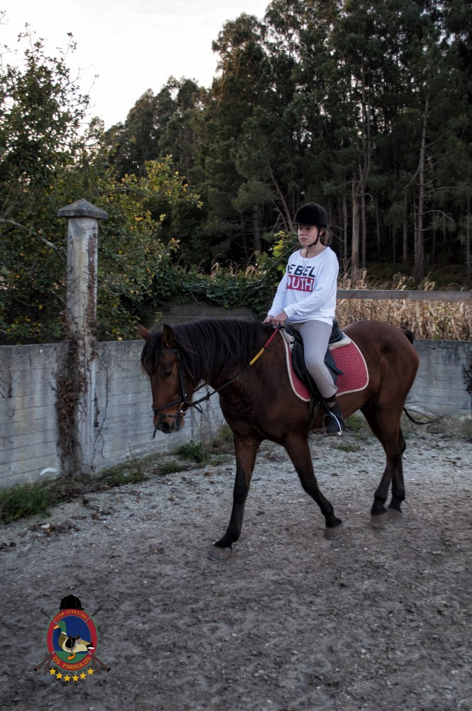 clases de equitación_hipica La Coruña_Os Parrulos_C17