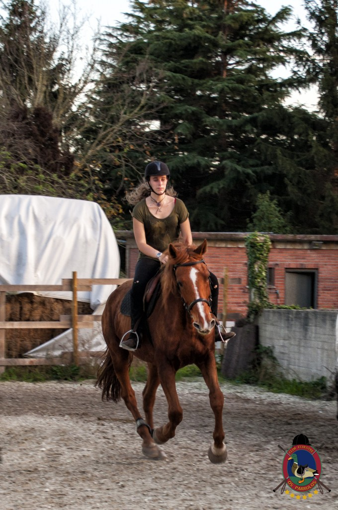 clases de equitación_hipica La Coruña_Os Parrulos_C18