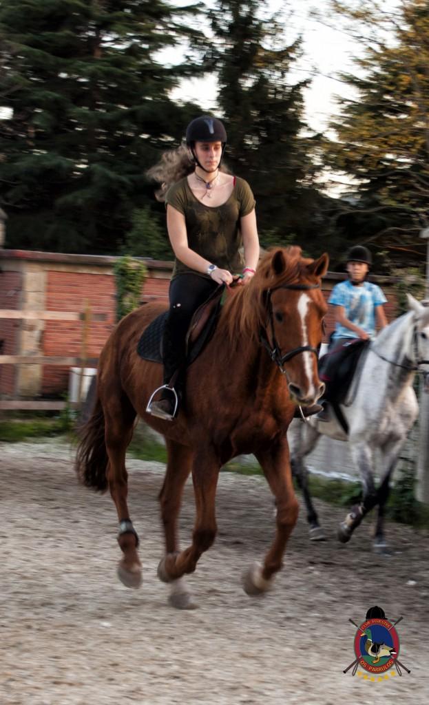 clases de equitación_hipica La Coruña_Os Parrulos_C23