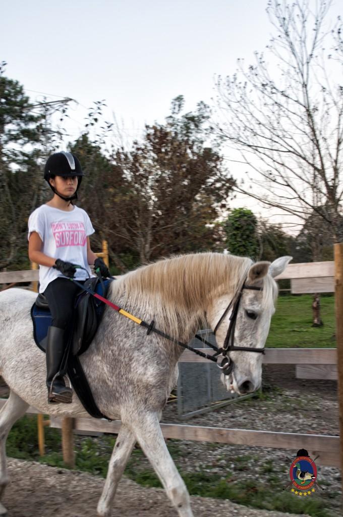 clases de equitación_hipica La Coruña_Os Parrulos_C25