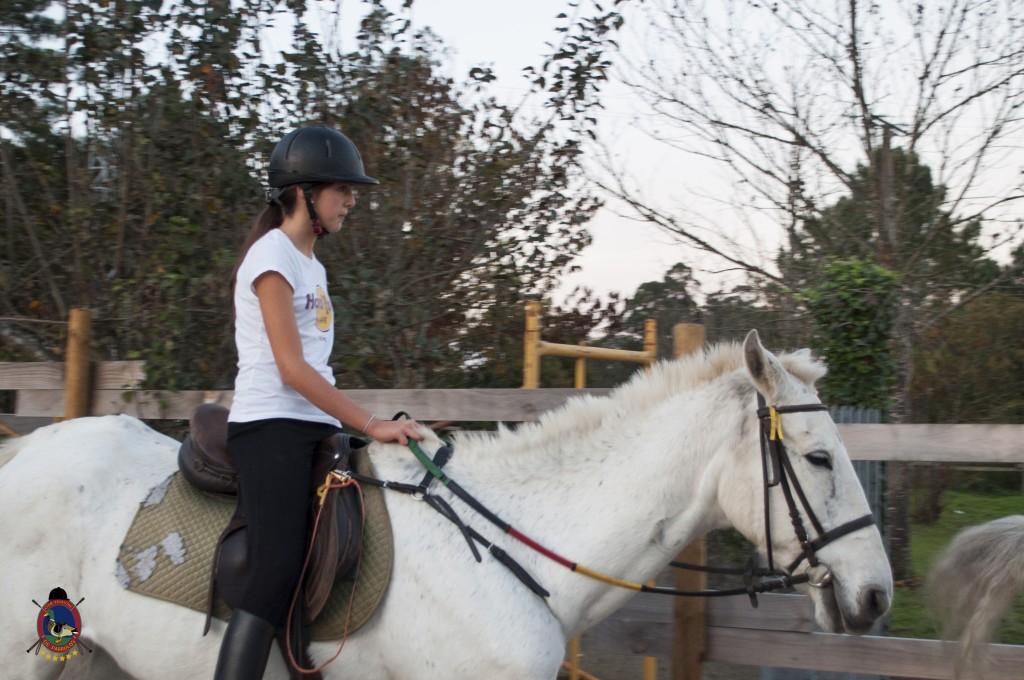 clases de equitación_hipica La Coruña_Os Parrulos_C26