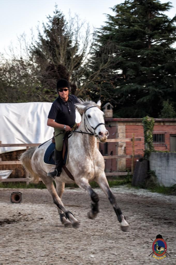 clases de equitación_hipica La Coruña_Os Parrulos_Luis Méndez Judel_C18