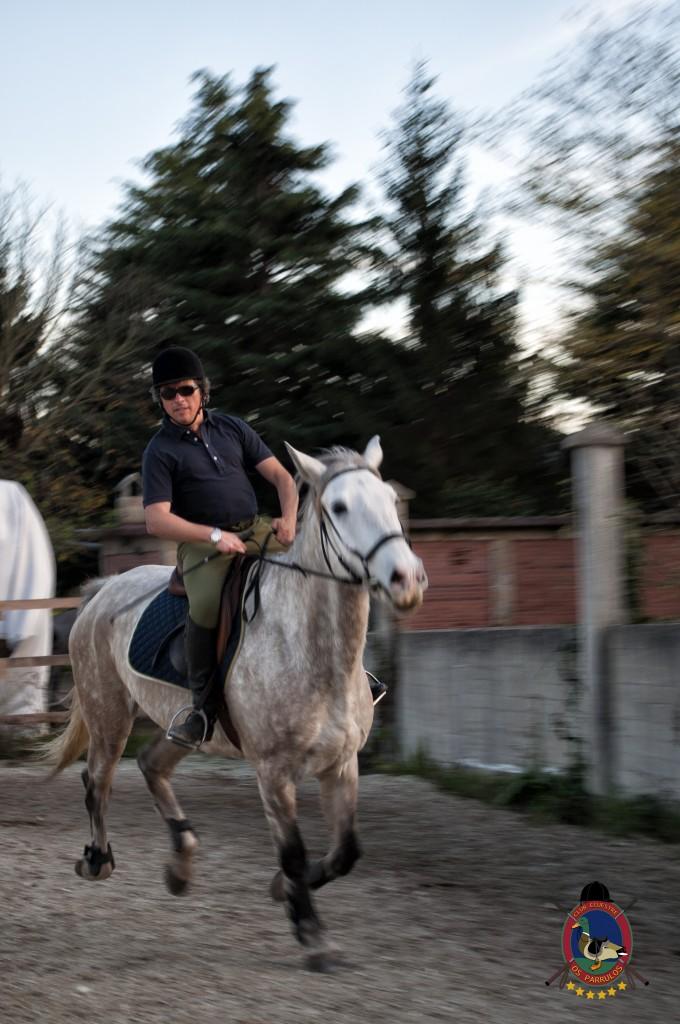 clases de equitación_hipica La Coruña_Os Parrulos_Luis Méndez Judel_C19