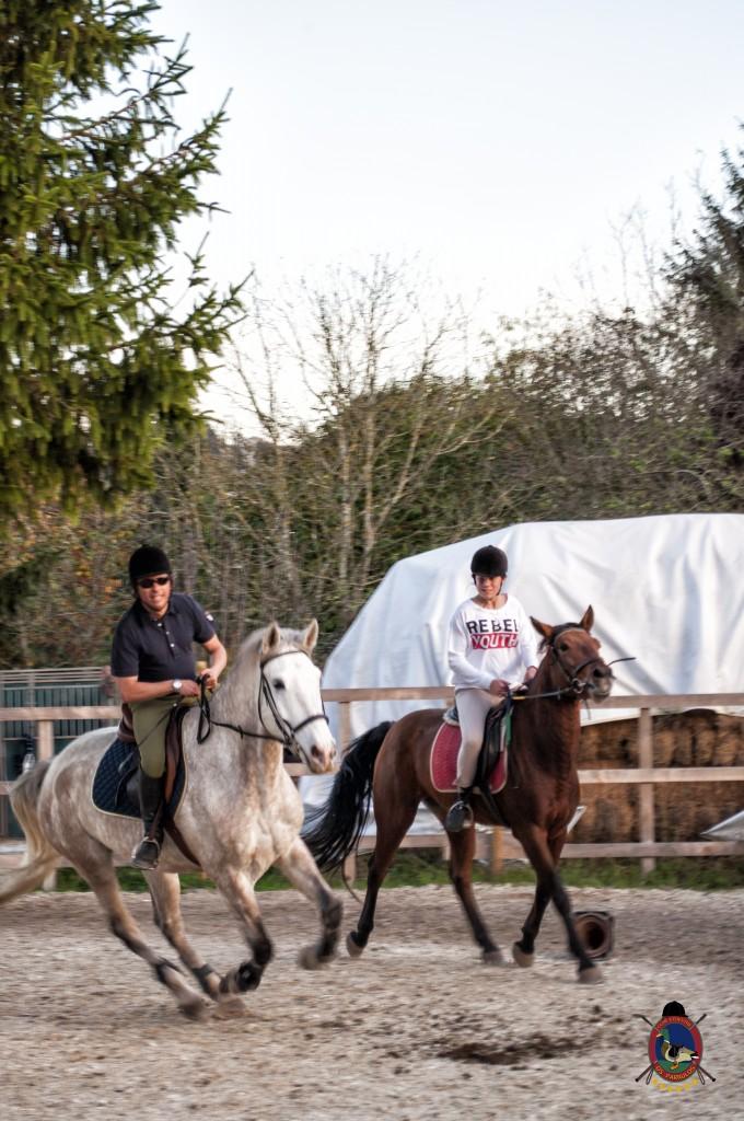 clases de equitación_hipica La Coruña_Os Parrulos_Luis Méndez Judel_C20