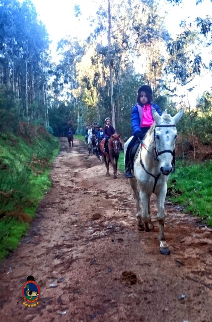 Os Parrulos_Clases de equitación_hípica La Coruña_cl1