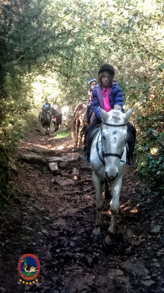 Os Parrulos_Clases de equitación_hípica La Coruña_cl12