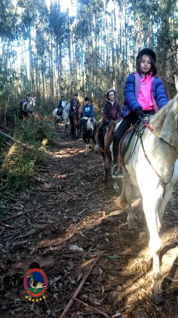 Os Parrulos_Clases de equitación_hípica La Coruña_cl13