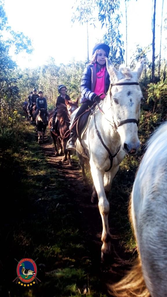 Os Parrulos_Clases de equitación_hípica La Coruña_cl16