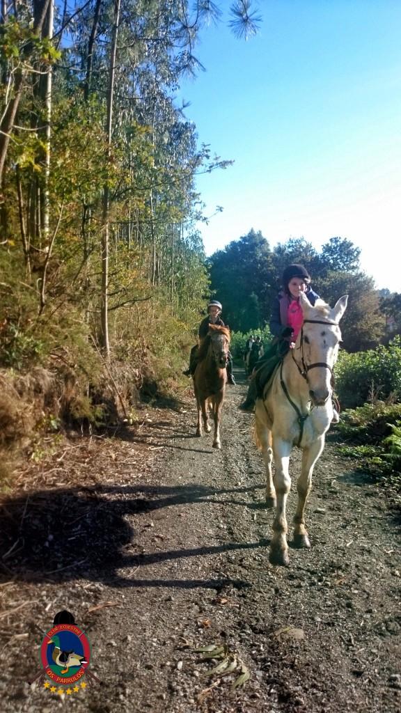 Os Parrulos_Clases de equitación_hípica La Coruña_cl18