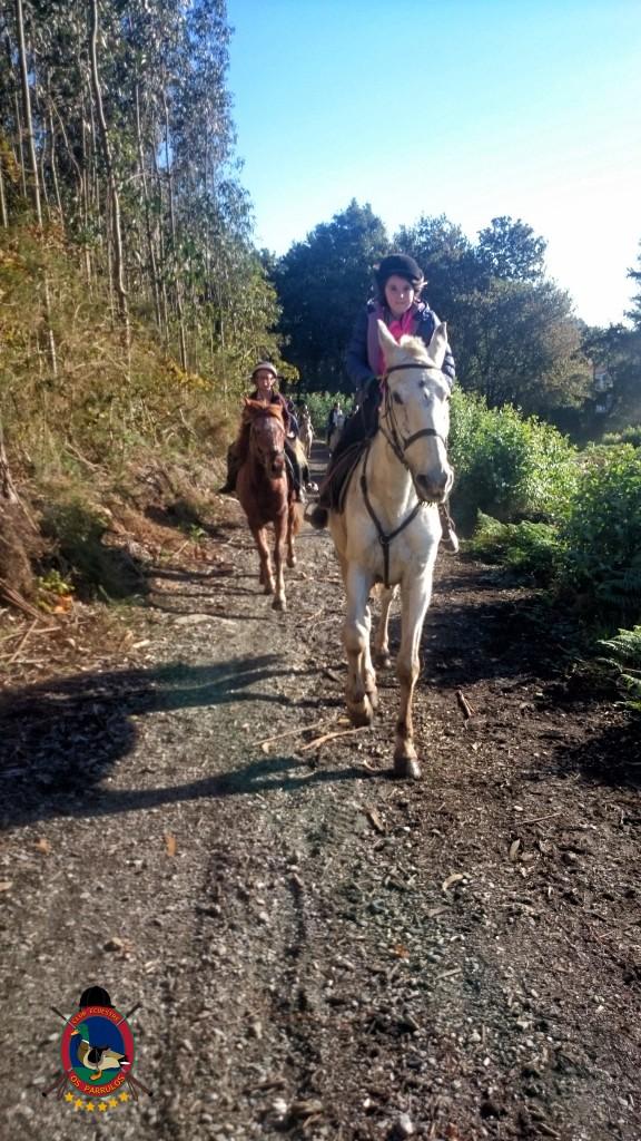 Os Parrulos_Clases de equitación_hípica La Coruña_cl19