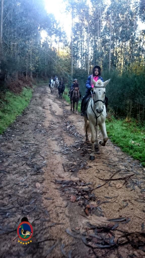 Os Parrulos_Clases de equitación_hípica La Coruña_cl4