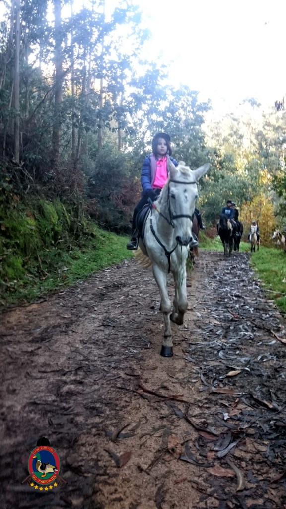 Os Parrulos_Clases de equitación_hípica La Coruña_cl6