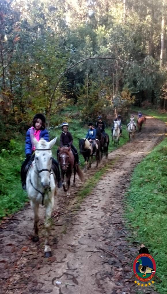 Os Parrulos_Clases de equitación_hípica La Coruña_cl7