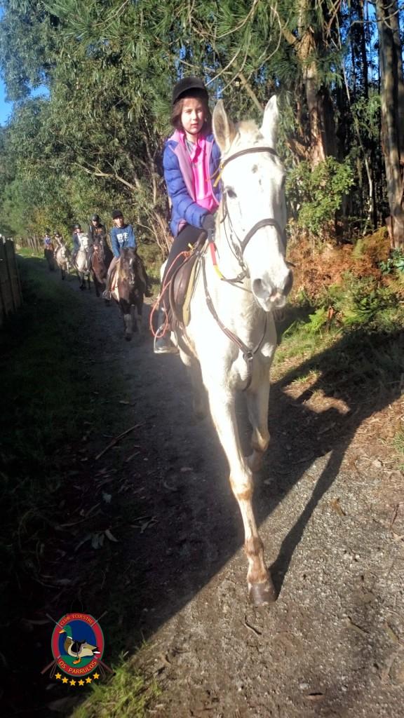 Os Parrulos_Clases de equitación_hípica La Coruña_cl8