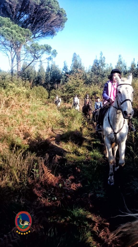Os Parrulos_Clases de equitación_hípica La Coruña_cl9