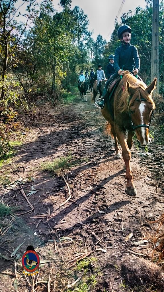 Os Parrulos_Hipica La Coruña_clases de equitación_cl1