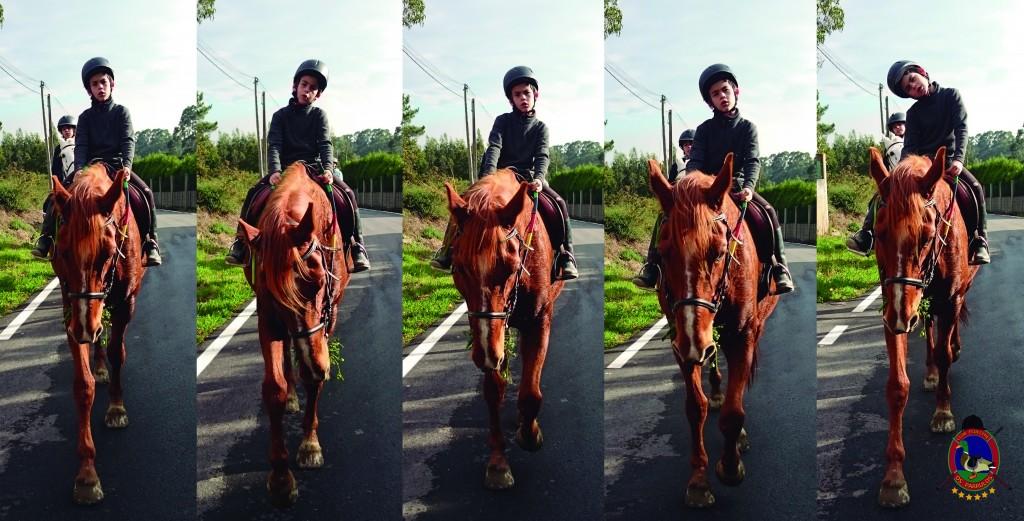 Os Parrulos_Hipica La Coruña_clases de equitación_cl10