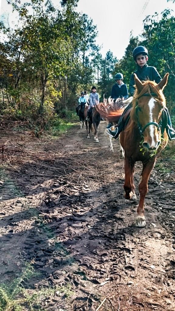Os Parrulos_Hipica La Coruña_clases de equitación_cl2